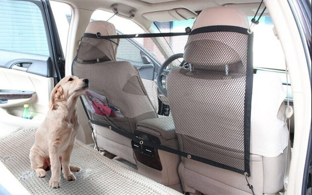 Pasja mreža za avto